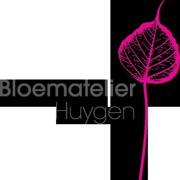 Atelier Huygen